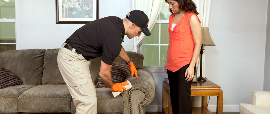 Lakewood, CA carpet upholstery cleaning