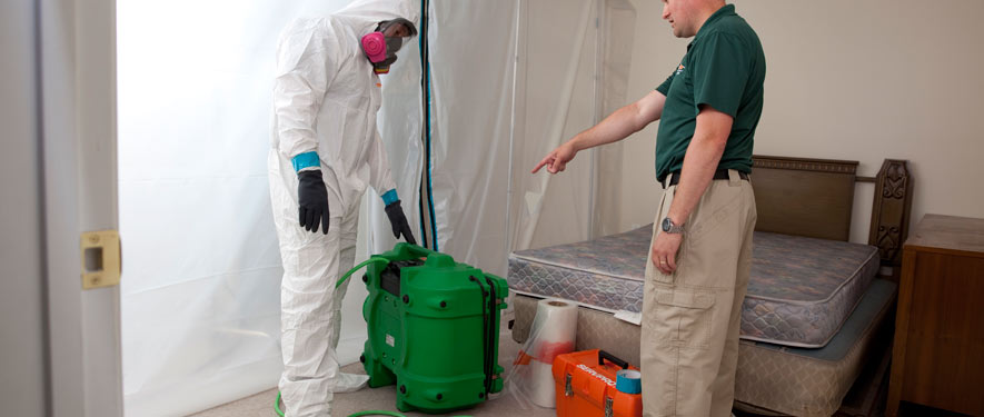 Lakewood, CA mold removal process